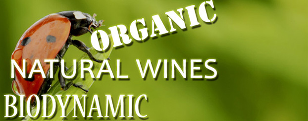 Organic natural biodynamic wine