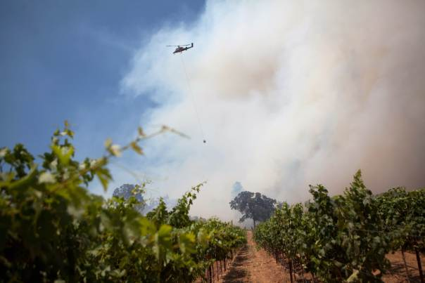 iDealwine California Fire