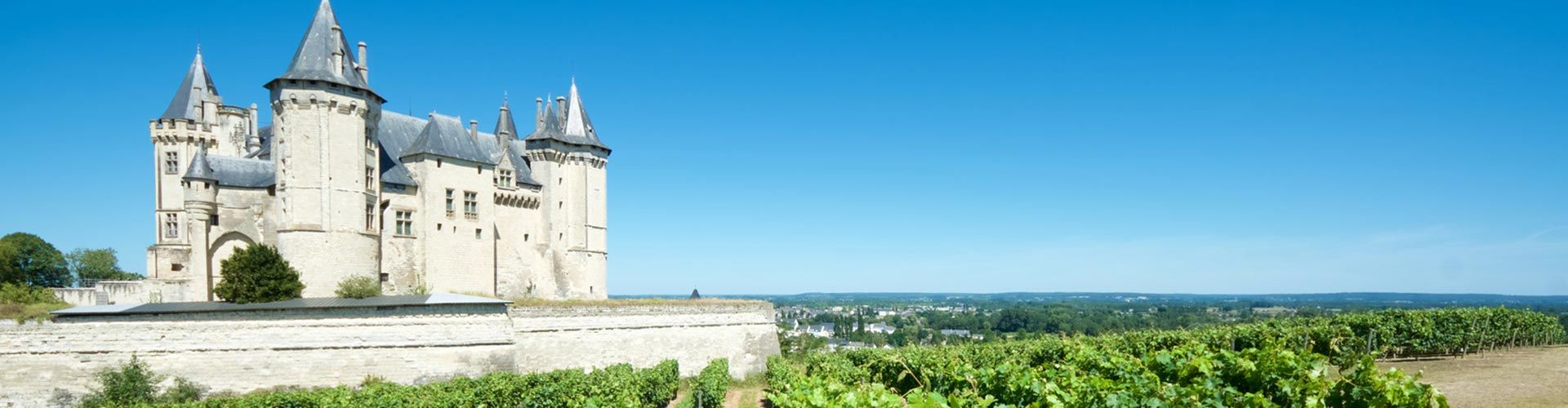 fixed-price-sale-loire-wines