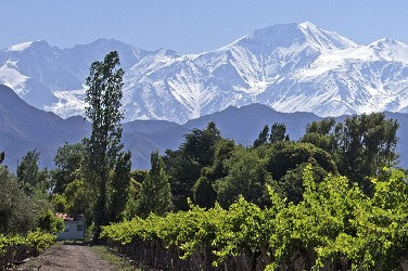 foreign wines vad blog