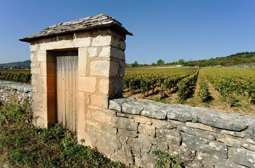 A guide to the wines of Burgundy: what on earth is a climat?