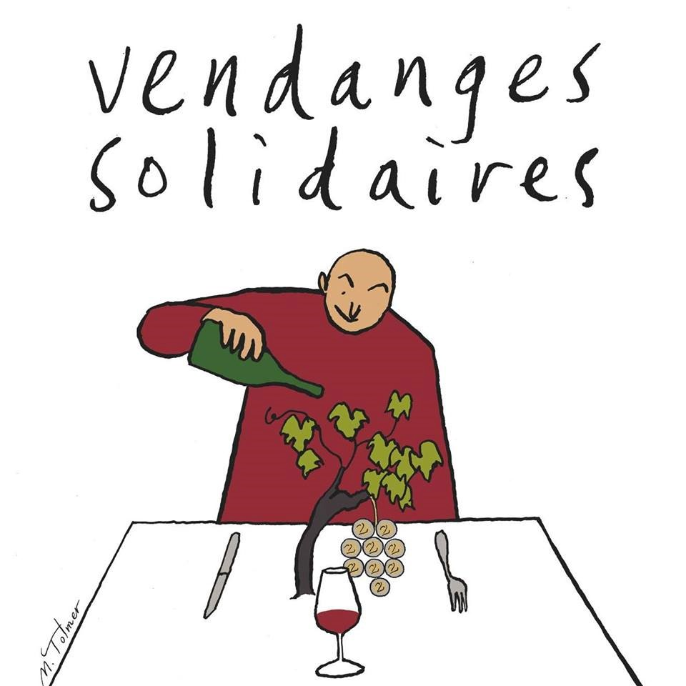 Vendanges solidaires 2