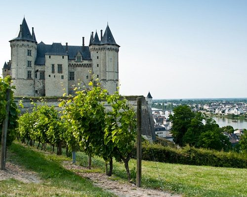 Appellations and terroirs of the Loire Valley