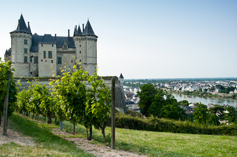 Loire wine guide appellations
