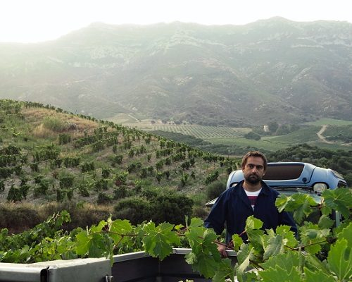 Jean-Baptiste Arena | For the love of Corsica, for the love of wine