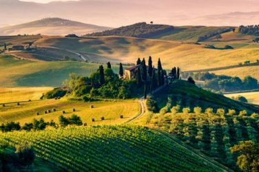 Italian wines auction 2020